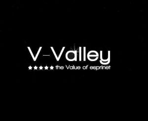 V-Valley_logo