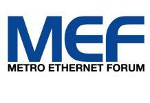 MEF_logo