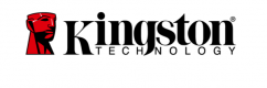 Logo Kingston Technology
