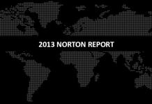 NortonReport2013