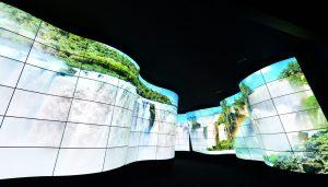 LG OLED Canyon_4