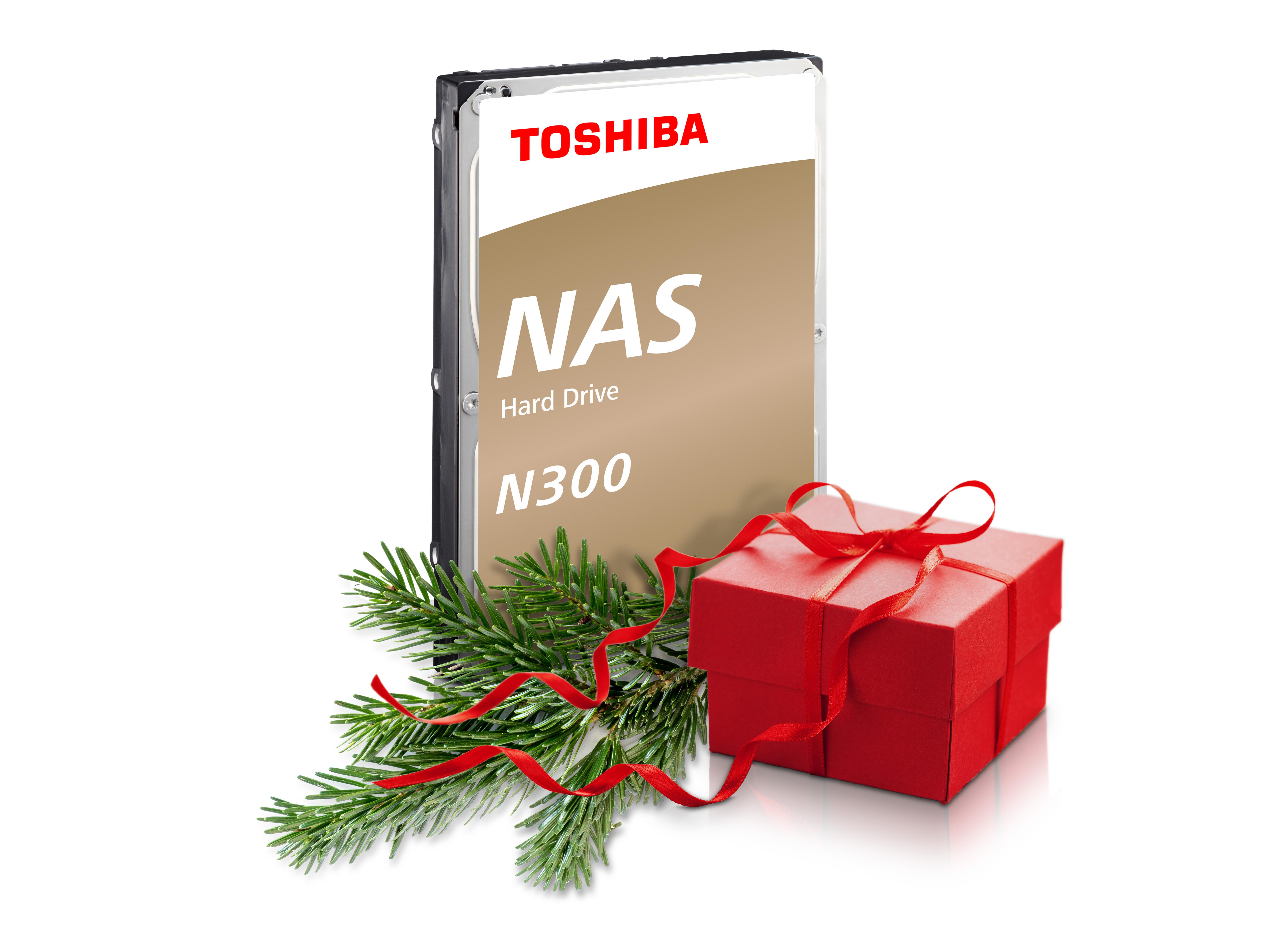 Immagini Natale Hard.Hard Disk Toshiba Sotto L Albero Di Natale Top Trade