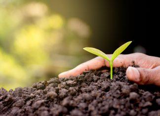 Konica Minolta_ sostenibilità_bizhub ECO