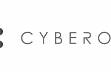 cyberoo_logo